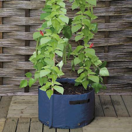 3-Cane Patio Planters